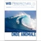 WB PERSPECTIVES ONDE ANOMALE GIU 2021